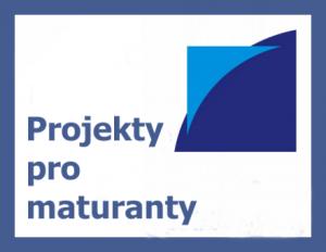 Projekt Firma Já a Projekt Vize 2030